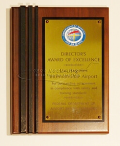 38-48 Plaque - Directors Award of Excellence