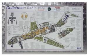 38-9 Print - Gulfstream G450
